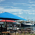 Fremantle by Therese Alcorn