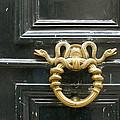 French Snake Doorknocker by Victoria Harrington