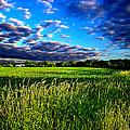 Fresh Air by Phil Koch