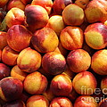 Fresh Nectarines - 5d17815 by Wingsdomain Art and Photography