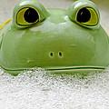 Frog In The Bath  by LeeAnn McLaneGoetz McLaneGoetzStudioLLCcom