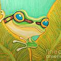 Frog Peeking Out by Nick Gustafson