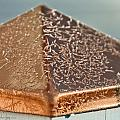 Frost On Copper Newel by Christine Stonebridge