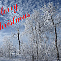 Frosted Trees Christmas by DeeLon Merritt