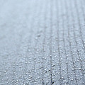 Frosted Woodgrain by Susan Herber