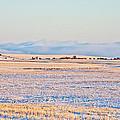 Frosty Morning 2 by Albert Seger
