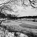 Frozen Central Park At Dusk by John Farnan