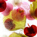 Frozen Flora 4 by Debbie Hartley