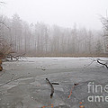 Frozen Lake In Winter by Matthias Hauser