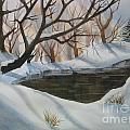 Frozen Pond by Mohamed Hirji