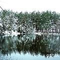 Frozen Reflection by Tisha Clinkenbeard