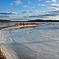 Frozen Shoreline by Jeff Galbraith