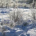 Frozen Winter Landscape by Howard Kennedy