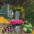 Fruit Stand II by John Shiron