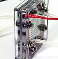 Fuel Cell by Friedrich Saurer