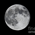 Full Moon by Daniel  Knighton