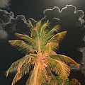 Full Moon In The Caribbean by Roupen  Baker