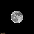 Full Moon  by Koichi Endo