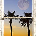 Full Moon Palm Tree Picture Window Sunset by James BO  Insogna