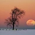 Full Moon Rising Near Graveyard by Larry Landolfi