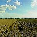 Furrowed Land by Jan W Faul