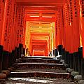 Fushimi Inari Shrine Pic.1 by Oleg Volkov