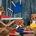 Fuzzy Bears 4 by Dinah Anaya