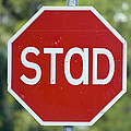 Gaelic Stop Sign Near Doocharry by Rich Reid