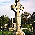 Galway Monastic Ruins 1 by Douglas Barnett