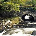 Galways Bridge, Killarney National by Richard Cummins