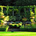 Garden Arbor by Lynn Bauer