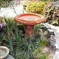 Garden Birdbath by Elaine Plesser