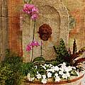 Garden Deco by Susanne Van Hulst