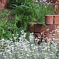 Garden Decor by Mike Stouffer