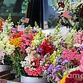 Garden Flower Stand by Yumi Johnson