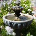 Garden Fountain by Carla Parris