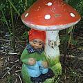 Garden Gnome Under Mushroom by Jeannie Atwater Jordan Allen