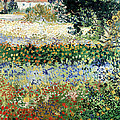 Garden In Bloom by Vincent Van Gogh