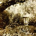 Garden Lantern by Bonnie Bruno
