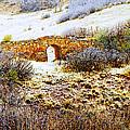 Garden Of The Gods - Bridge Panorama by Lenore Senior