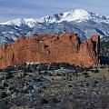 Garden Of The Gods by Sandra Bronstein