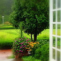 Garden Rain by Brandi Allbright