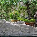Garden Repose by Cheri Randolph