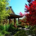 Garden Retreat by Lynn Bauer
