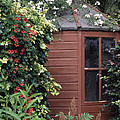 Garden Shed by Archie Young