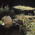 Garden Urns In A Garden by The Irish Image Collection