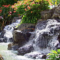 Garden Waterfall - No 2 by Mary Deal