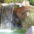 Garden Waterfall by Shane Bechler