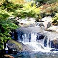 Garden Waterfall With Koi Pond by Elaine Plesser
