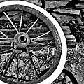 Garden Wheel by Kristen Cavanaugh